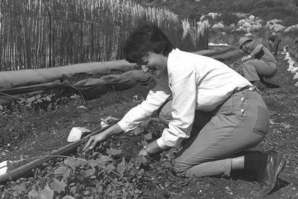 יעלק'ה (יעל זכאי) בשדה, 1962.