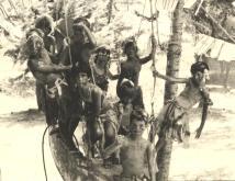 אלמוג 1973