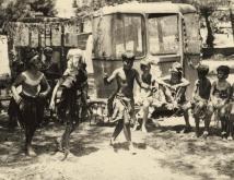 דקל ואחרים 1973