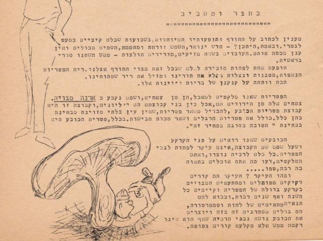 בחצר ומסביב ינואר 1963 1